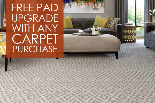 100 Off Any Stainmaster 174 Petprotect Carpet Purchase